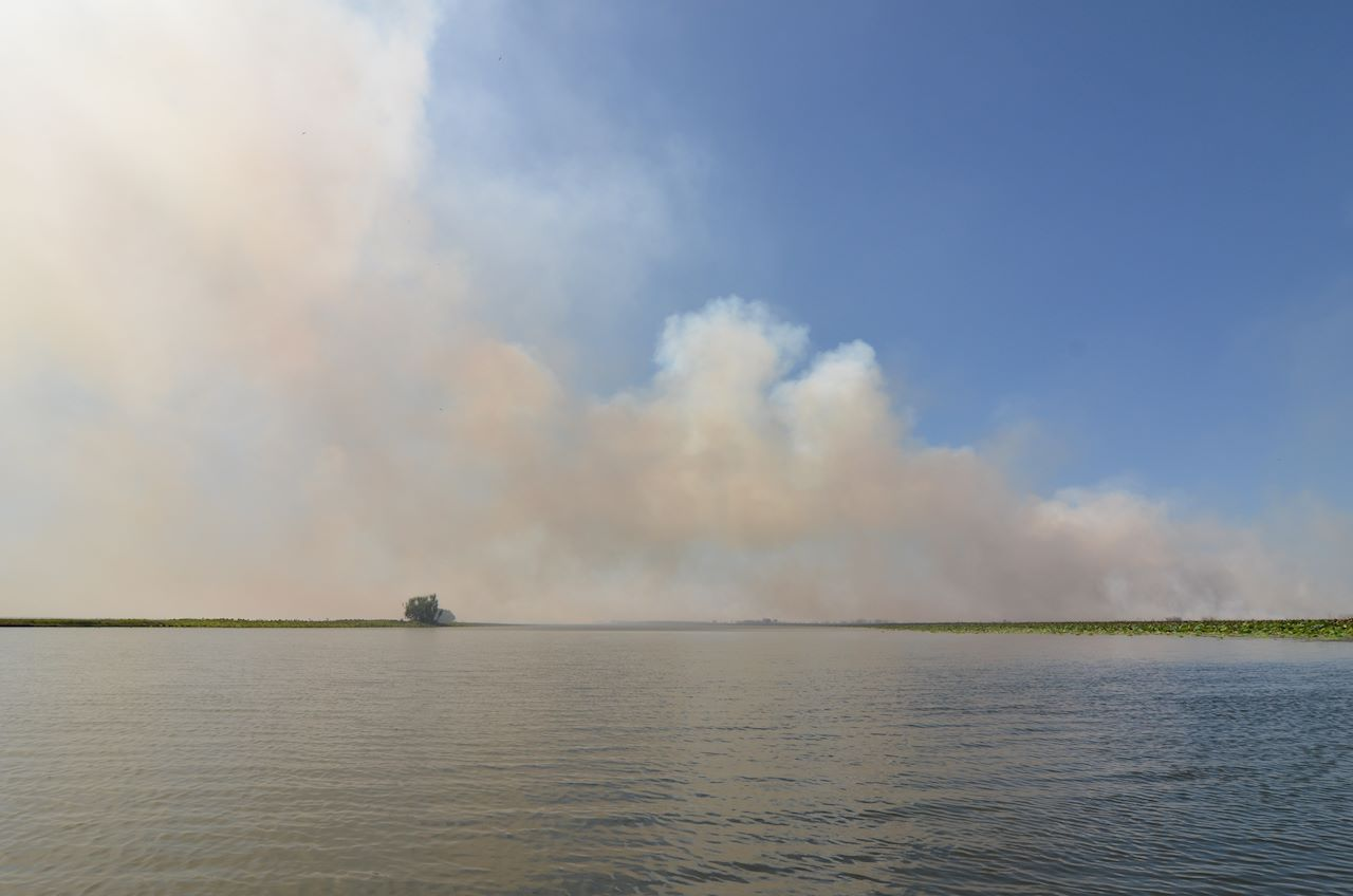 fire on the billabong
