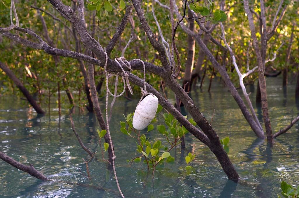 Et on accroche le flotteur dans les branches.